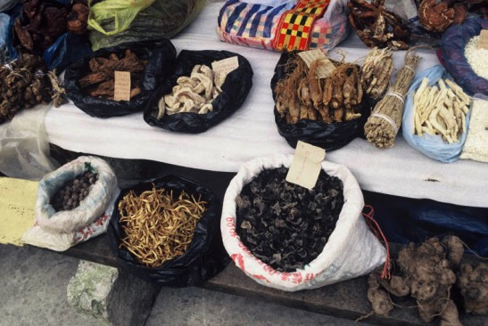 Traditional medicines for sale at kiosks; Wolong Nature Reserve,